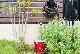 フランス漆喰が素敵な小さなお庭のリノベーション。