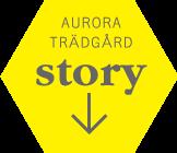 AURORA VARUHUSET items